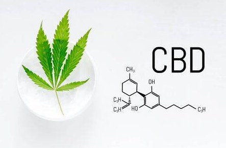 A Comprehensive Insight on CBD in the Market Today