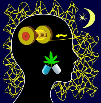Medical Cannabis That Makes You Fall Asleep